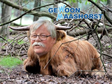 Gewoon Maashorst
