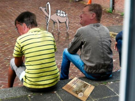 kameel-oog-naald