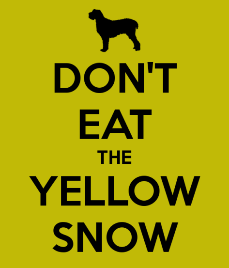 don-t-eat-the-yellow-snow