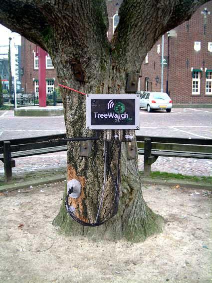 TreeWatch Uden