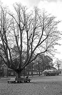 Prilleke herfst 1960
