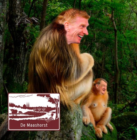 Maashorst-apen