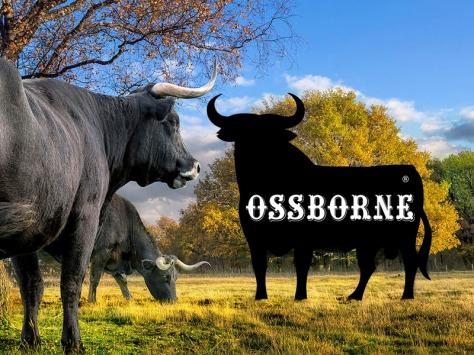 OSS-borne