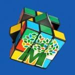 maashorst puzzle