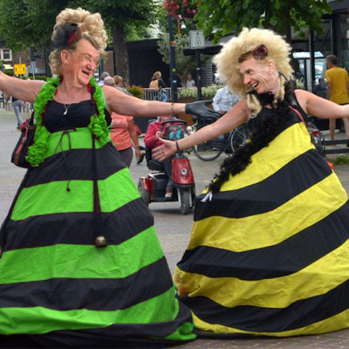 Maashorst ladys